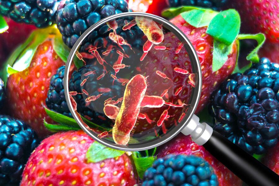 foodborne illness